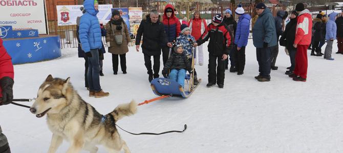 Фонд «Согрей добром» совместно со школой олимпийского резерва Истина организовал для детей праздник с участием ездовых собак.